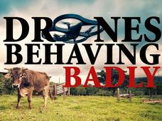 In Pictures: Drones behaving badly