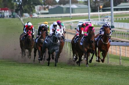 Australian Turf Club trots out Wi-Fi network