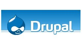 Open-source Drupal turns pro
