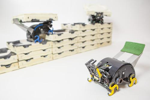 A team led by Harvard researcher Justin Werfel has built robots that can collectively build structures by acting independently.