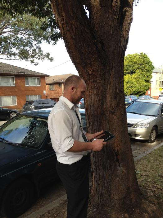 Tree co-ordinator, Scott Wilkie, performs a tree inspection using an Apple iPad. Credit: Auburn City Council